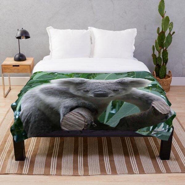 Koala and Eucalyptus Throw Blanket
