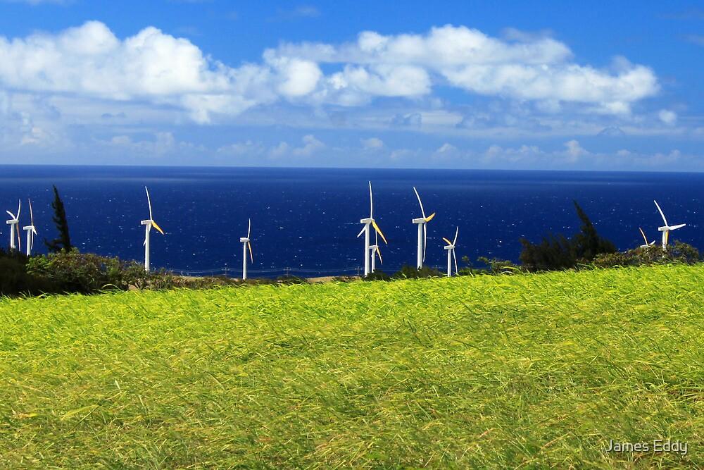 Green Energy by James Eddy
