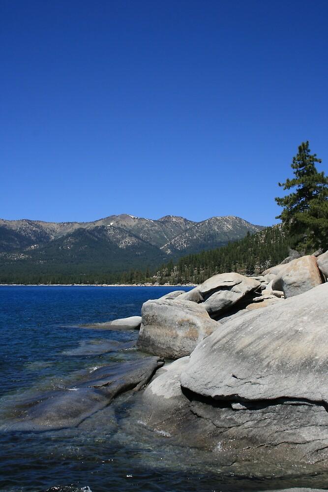 Tahoe 'turtle', Lake Tahoe, NV by Aggiegirl