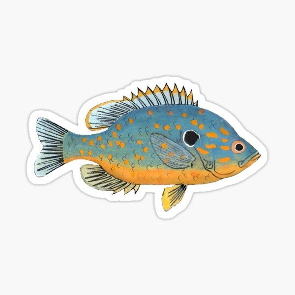 Orange Spotted Sunfish Sticker