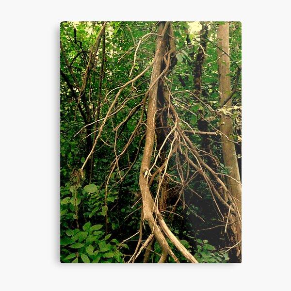 The Tree Spirit Metal Print