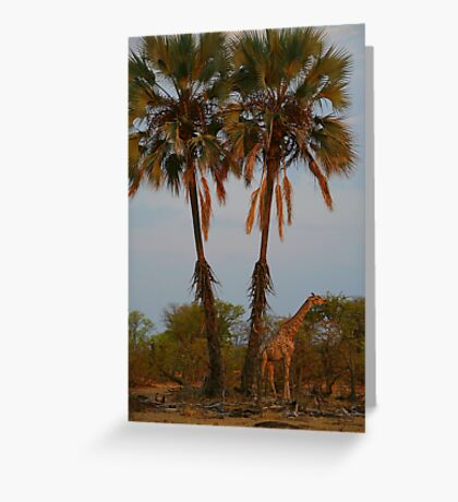 Giraffe Under Palm Trees Greeting Card