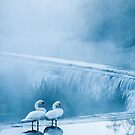 Early morning at Warleigh Weir by Jens Roesner