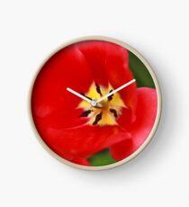 Red Tulip Blossom Clock