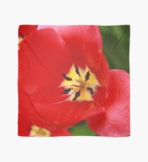 Red Tulip Blossom Scarf