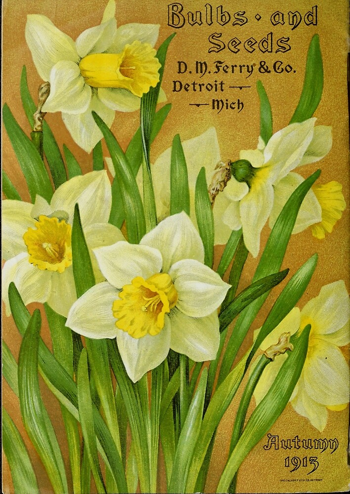 Vintage Daffodils by Douglas E.  Welch