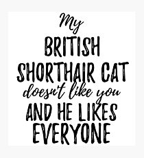 Lámina fotográfica My British Shorthair Cat Doesn't Like You and He Likes Everyone