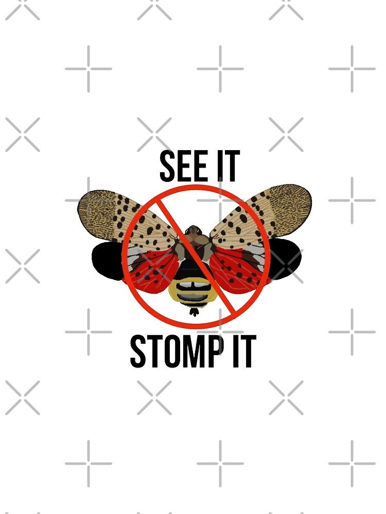 Spotted Lanternfly See It Stomp It by radiantdark