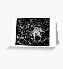 Water Leaf Greeting Card
