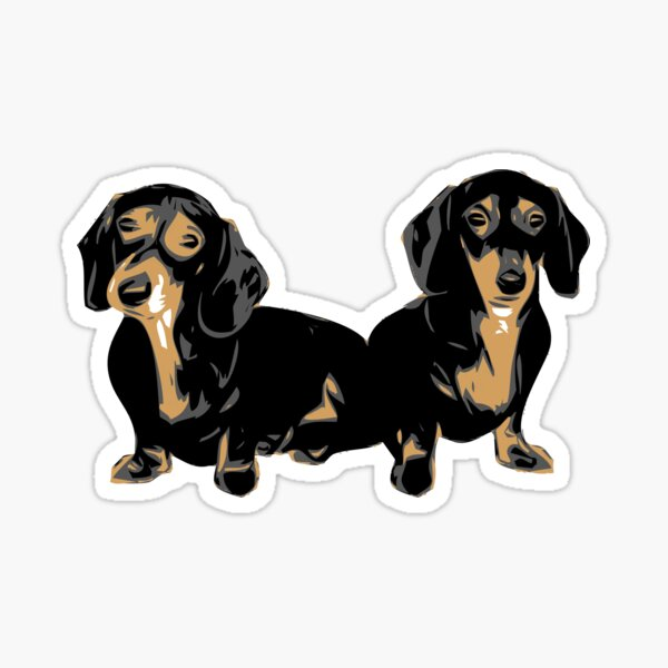 Two Dachshund Puppies Colour Vector Sticker