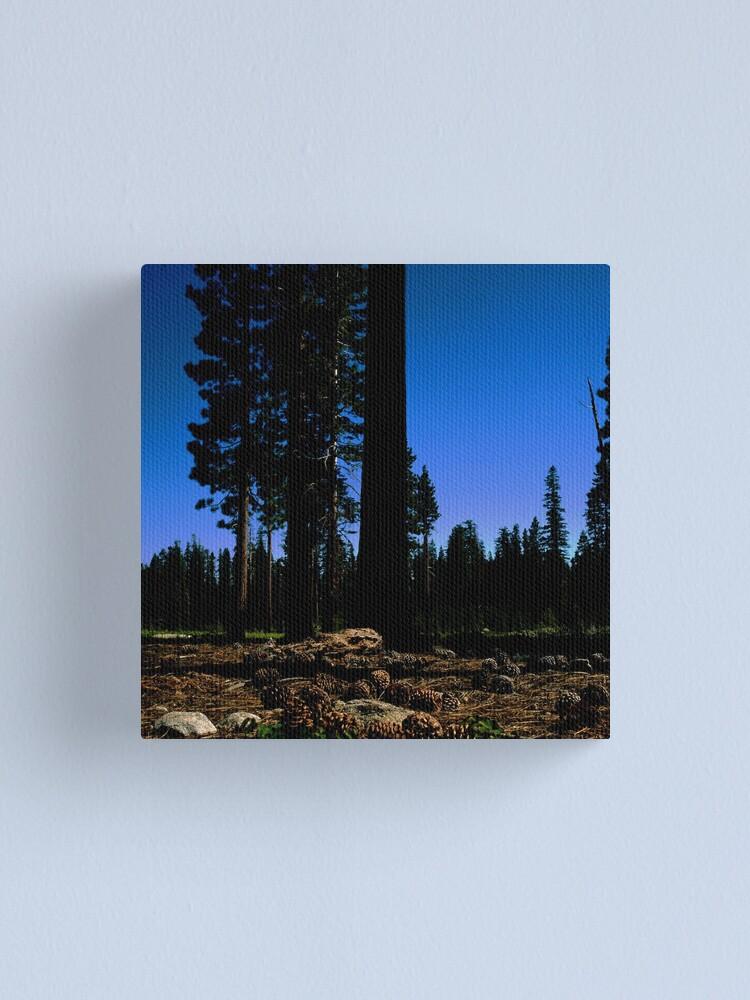Alternate view of Near Laurel Lake in Yosemite N.P. (7/3/2010) Canvas Print