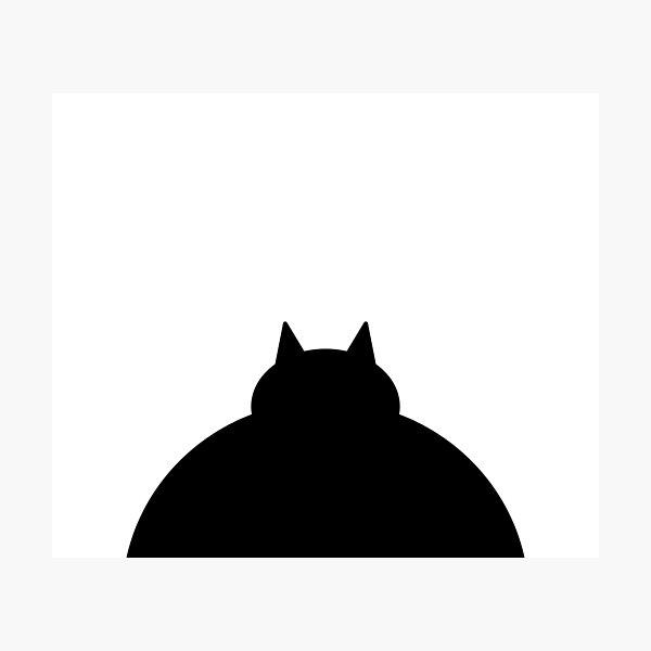 Fat Black Cat Photographic Print