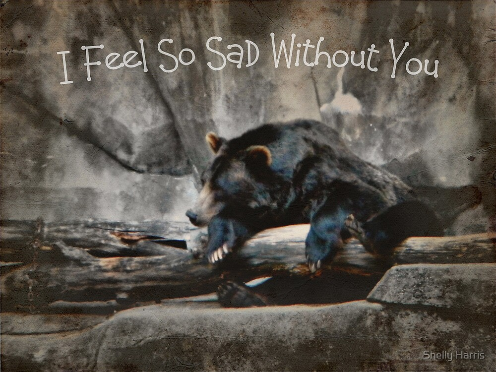 I Feel So Sad Without You by Shelly Harris