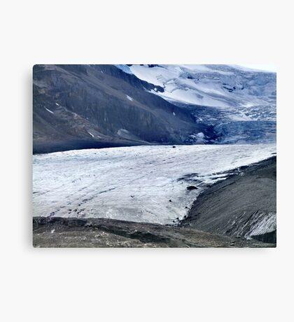 Athabasca Glacier (1) Canvas Print