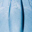 Details of Legends: Jaguar E-Type by Jens Roesner