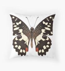 "Butterfly species Papilio demoleus "" Lemon Butterfly"" Throw Pillow"