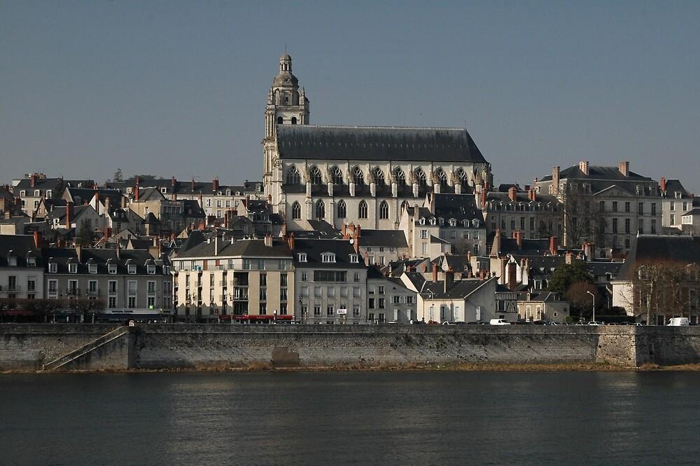 Cathedrale Saint Louis, Blois, France 2012 by muz2142