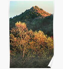 SPRING EVENING,THE CHIMNEY TOPS Poster