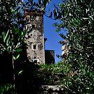 Piemont...        castello di bagnolo by Rebattu Etienne