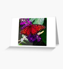 Ambiance Greeting Card