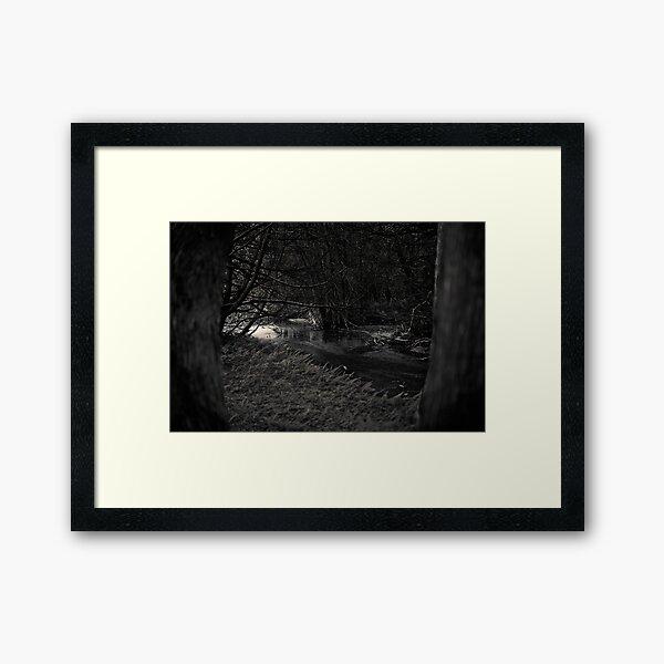 The Dark Woods at Dawn Framed Art Print