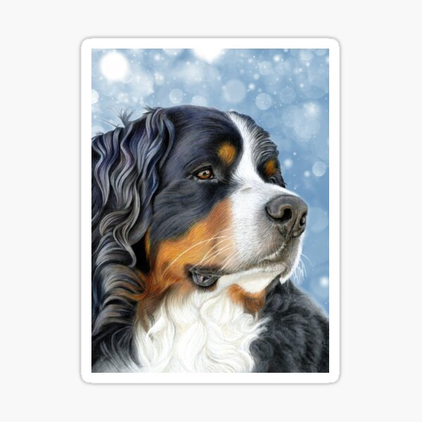 Bernese Mountain Dog - Ice Blue Sticker