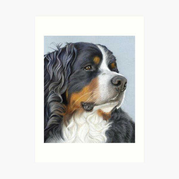 Bernese Mountain Dog, Ruger Art Print