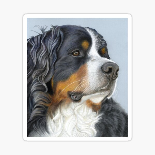 Bernese Mountain Dog, Ruger Sticker