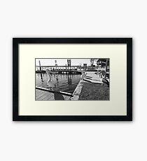 Pelicans Mallacoota Lake in flood Framed Print