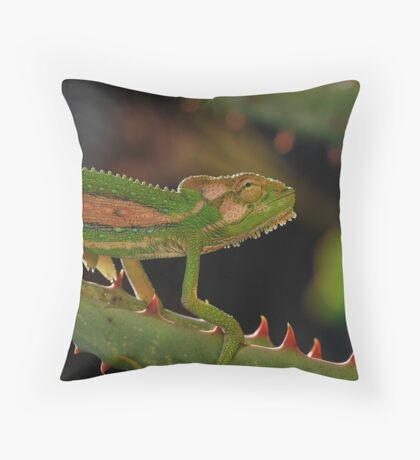 'Careful Descent' Throw Pillow