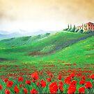 Tuscany Under Golden Skies by Yulianna-ca