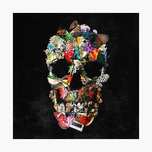 Fragile Skull 2 Photographic Print