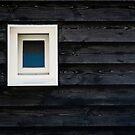 A view into black by George Parapadakis ARPS (monocotylidono)