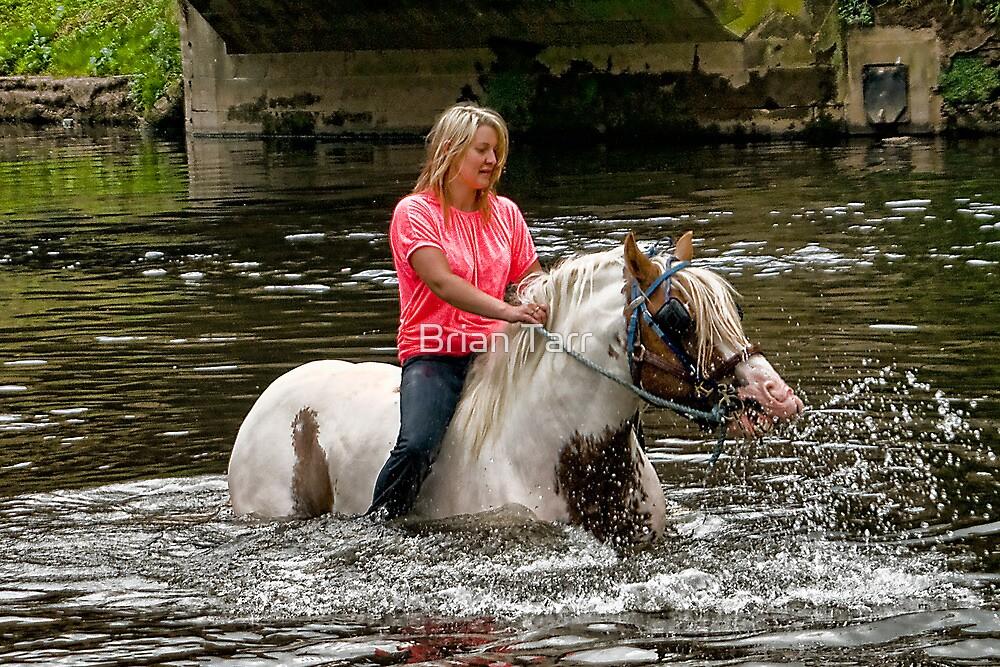 Appleby Horse Fair by Tarrby