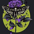 Death Hawk Moth by retkikosmos