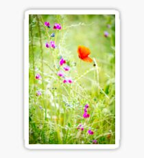 Poppies and Sweet Peas Sticker