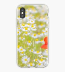 Field of Daisies and the Lonely Poppy iPhone Case