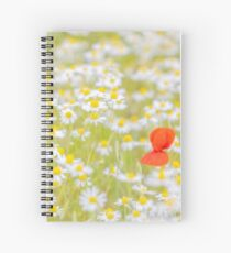 Field of Daisies and the Lonely Poppy Spiral Notebook