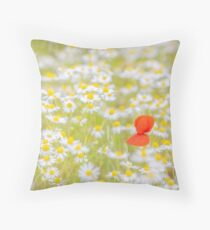 Field of Daisies and the Lonely Poppy Throw Pillow