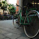 verde by toddmreed