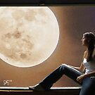 Moon Watch by Sally McLean