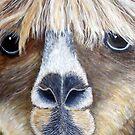 Alpaca by Pauline Jones