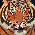 Tiger, Tiger by Pauline Jones