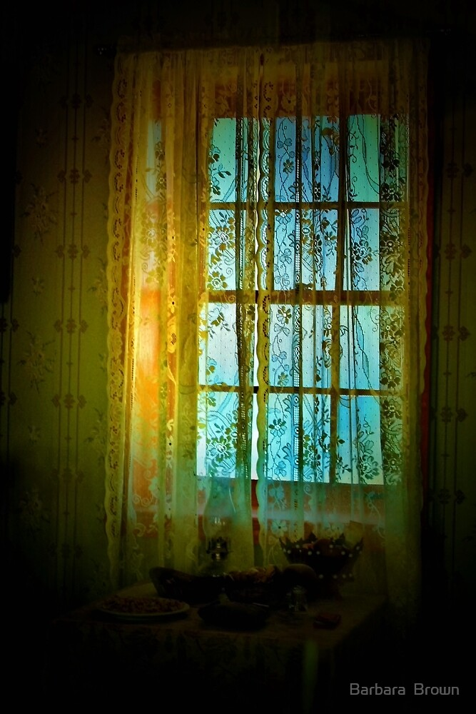 Sunlight and Lace by Barbara  Brown
