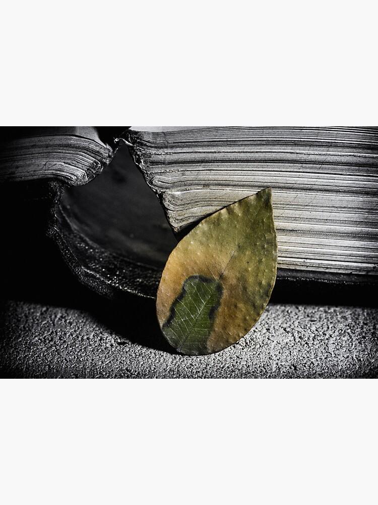 Still life of a book & a leaf by fardad