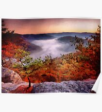 Foggy Morn - Red River Gorge Poster