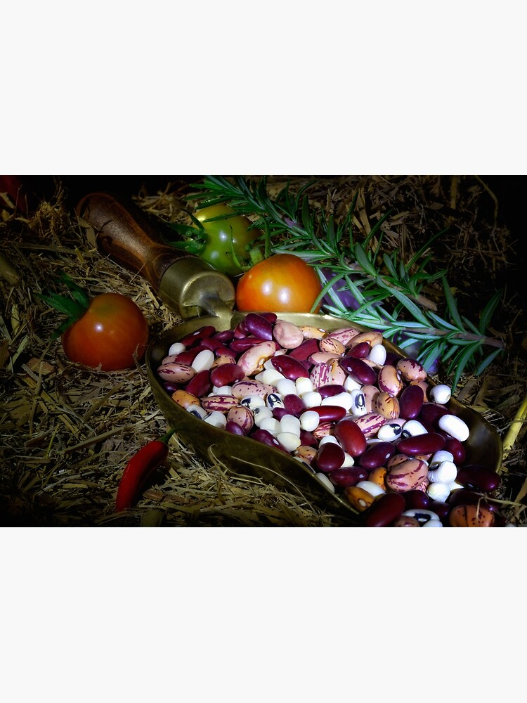 Still life beans & vegetable by fardad