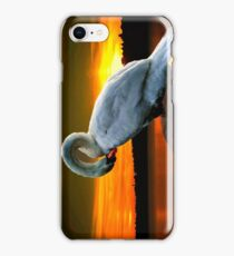 Sleeping swan iPhone Case/Skin