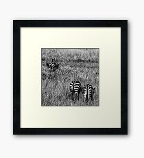One of the Crowd II Framed Print