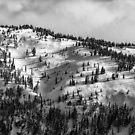 «Vista del Monte Washington» de Charles Kosina
